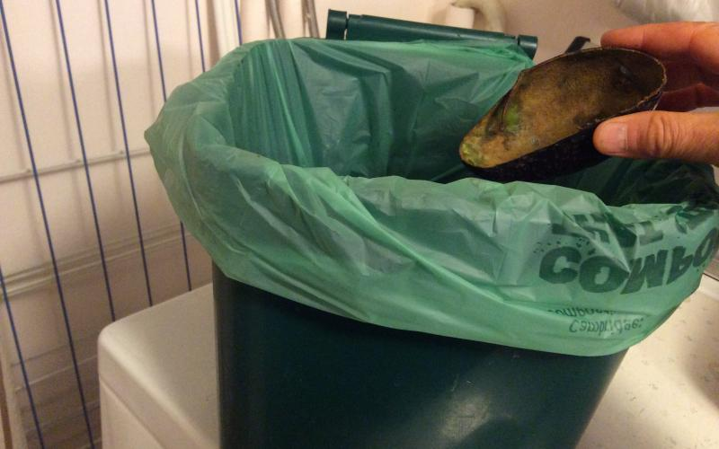Hand dropping avocado shell into small, green, lined compost bin.