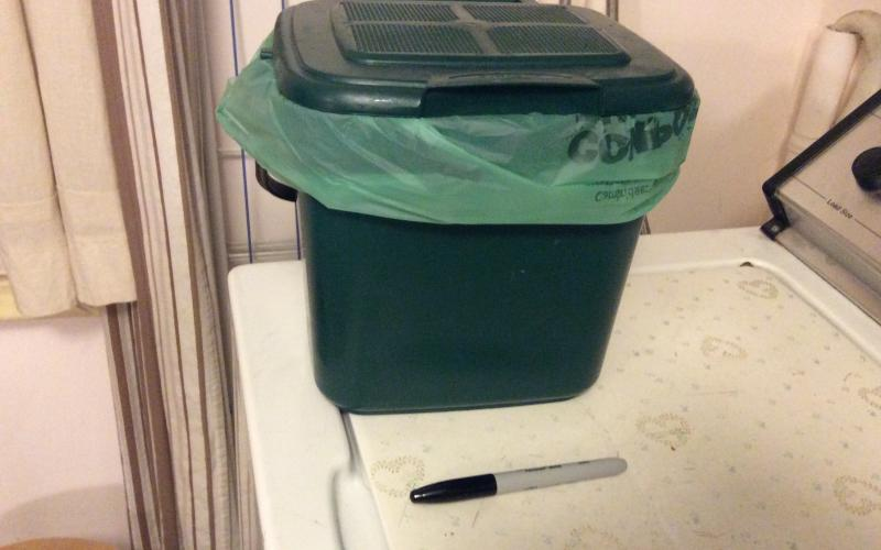 Small, green, lined compost bin (about eleven inches, all sides) with Sharpie shown for size.